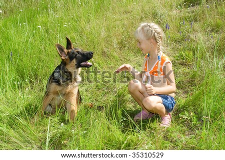 The girl and the puppy of the German shepherd on a lawn