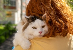 The girl holds a furry cat on her shoulder. Big white furry pet, beautiful eyes, walking on the street.