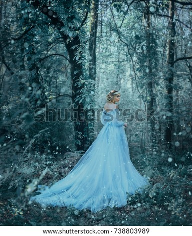 The girl is winter. The Queen in a luxurious blue dress bears snow and cold. Artistic Photography