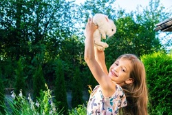 The girl plays with a pet bunny. Decorative dwarf rabbit with blue eyes. Child and pet friendship concept. A cute decorative bunny in the arms of a beautiful girl.