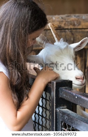The girl strokes the goat #1056269072