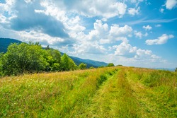 the glade is covered with grass and flowers on top of the mountains with blue sky and clouds.