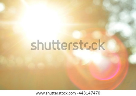 the glare of the sun  the sun's ...