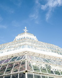 The glass dome exterior of the Victorian palm house on a brilliantly blue autumnal day