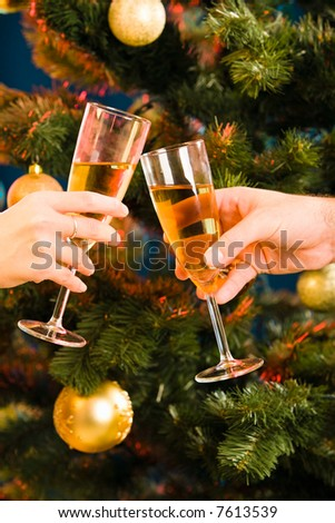 The glasses of champagne making a clink on the background of christmas- tree