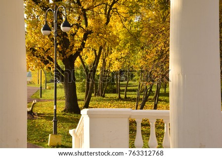 the golden autumn in the park....