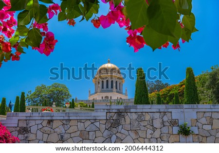 The golden dome of the Shrine of the Báb, second holiest place on Earth for Bahá'ís, located on the slopes of Mount Carmel in Haifa, Israel, with pink bougainvillea flowers in the foreground Stock fotó ©