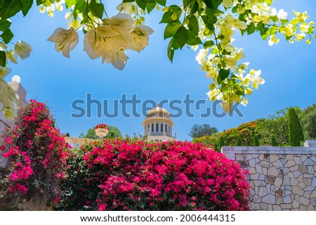 The golden dome of the Shrine of the Báb, second holiest place on Earth for Bahá'ís, located on the slopes of Mount Carmel in Haifa, Israel, with pink and white bougainvillea flowers in the foreground Stock fotó ©