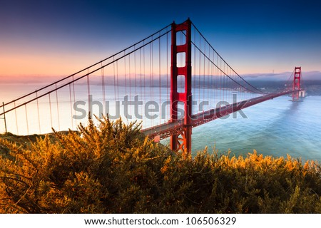 The Golden Gate Bridge of San Francisco, California basks in the warm colorful foggy light of an early morning.