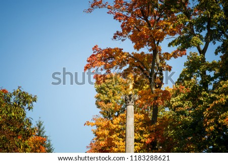 The golden statue of the Virgin Mary in Fulda surrounded by autumnal deciduous forest. #1183288621
