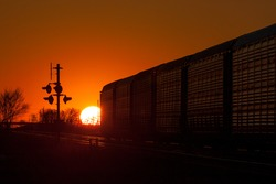 The golden sun is seen setting behind a departing freight train.