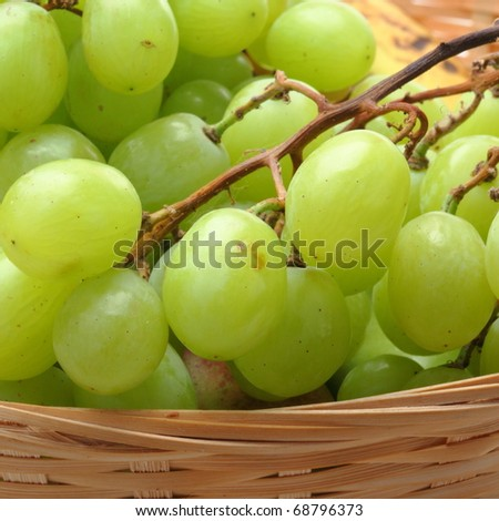The grape in vase isolated on white background