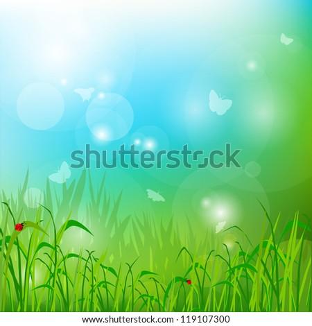 The grass, the sun, ladybug.