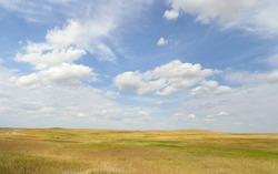 The Grasslands of the Great Plains in South Dakota