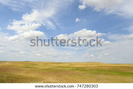 The Grasslands of the Great Plains in South Dakota #747280303