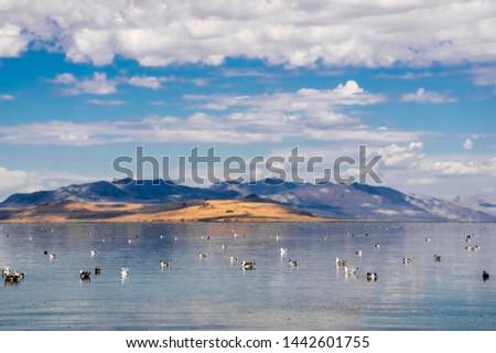 The Great Salt Lake. U.S. State of Utah #1442601755