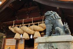 The great Shimenawa (enclosing rope by laid rice straw) and the guardian lion statue of the Suwa Taisha Shimosha Akimiya (The Autumn hall of the lower shrine of The Suwa Grand Shrine) in Nagano, Japan