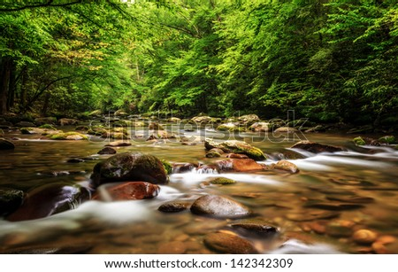 The Great Smokey Mountains National Park, rushing stream in spring time