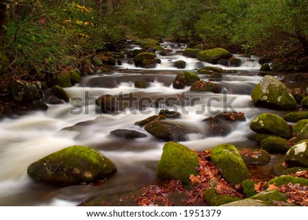 The Great Smoky Mountains roaring fork motor trail