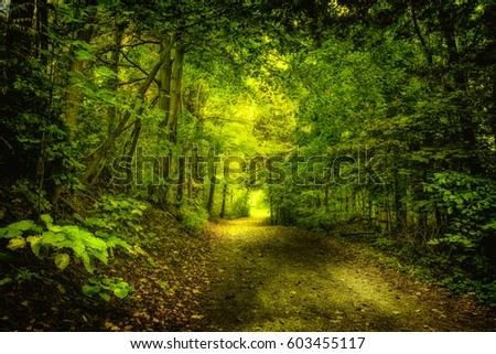 Shutterstock the green nature