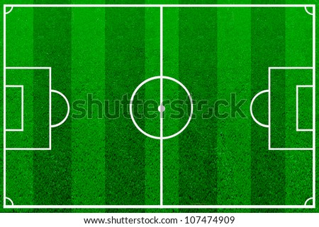 The green soccer field with lines