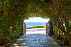 The green tunnel and the light at the end of it. Lush greenery creating a tunnel, sea horizon at the end of the tunnel. A shady alley through dense greenery leading to the seashore.