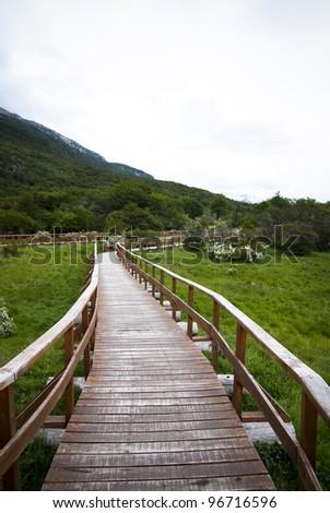 The green walkway - stock photo