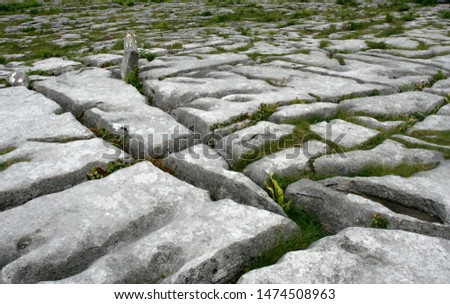 The grey limestone with parallel splits and low green grass filled splits.