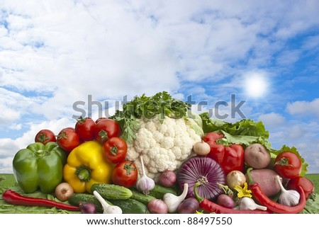 The group of vegetables in front of landscape