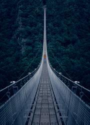 The Hängeseilbrücke Geierlay (Simple suspension bridge Geierlay) is a bridge in the low mountain range Hunsrück area of Germany.