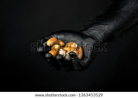 the hand is completely in black paint holding a handful of acorns. Horizontal frame