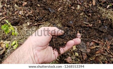 The Hand Of A Gardener Checking His Compost Soil