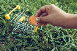 The hand puts the bitcoin in the cart. Money bitcoin on grass background. Business, finance, Account, Economy, trade and investment concept.