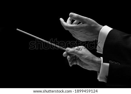 The hands of a music conductor Foto stock ©