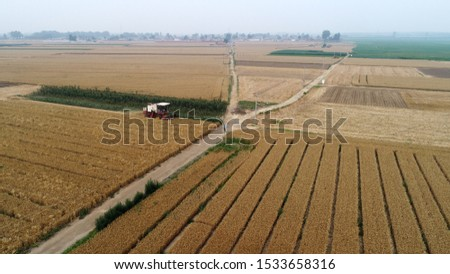 The harvester harvested wheat in the field, Luannan County, Hebei Province, China #1533658316