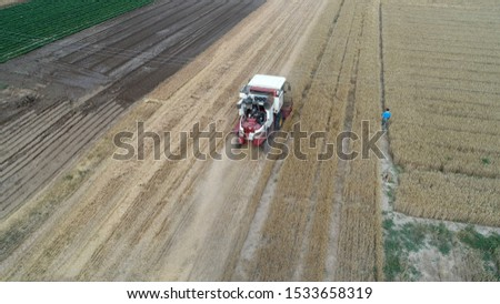 The harvester harvested wheat in the field, Luannan County, Hebei Province, China