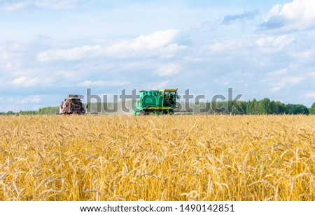 The harvester is harvesting. Autumn harvest of grain. The concept of a rich harvest.