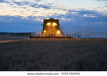 The harvester operates in the field in the evening. Wheat harvested at night #1445766446