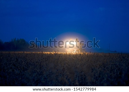 The harvester operates in the field in the evening. Wheat harvested at night #1542779984