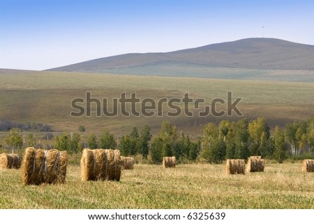 The hay bale in Inner Mongolia grassland in autumn season.