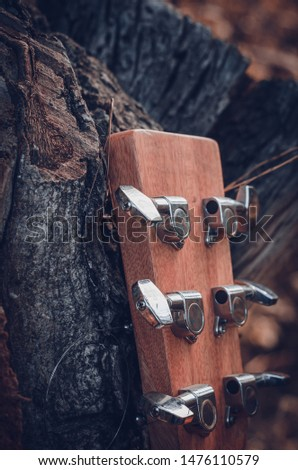 The head of the neck of a six-string guitar with metal pegs and strings in warm sunlight. Macro. Eye level shooting. Soft focus. The vertical location of the picture