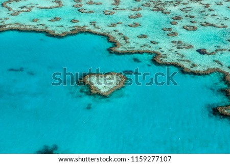 The Heart in The Great Barrier Reef in Australia. #1159277107