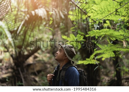 The hikers are traveling in the rain forest with beautiful nature. Young Asians go on a journey through the forest. Foto stock ©