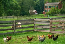 The historic Hale Farm Village in Ohio's only National Park, Cuyahoga Valley.