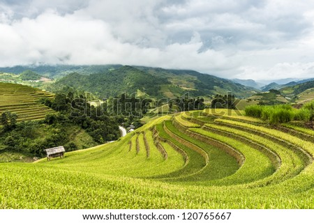 The house on the field of rice terraces with mountains covered by clouds at background.