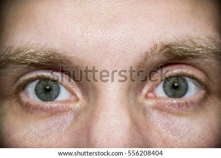 the human eye from a close distance - Shutterstock ID 556208404