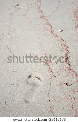 The human footprint on the beach with pink shell texture.