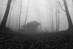 The hunters cabin in Mt. Pelion