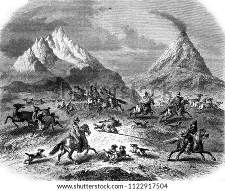 The Hunting at the Guanacos, in the vicinity of the volcano Antuco, vintage engraved illustration. Magasin Pittoresque 1858.