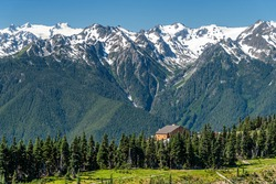 The Hurricane Ridge viewpoint of Olympic National park in Washington, USA. The background is snow mountain